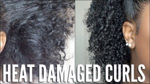 heat-damaged-natural-hair-simple